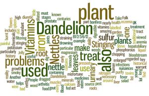 weeds-wordle